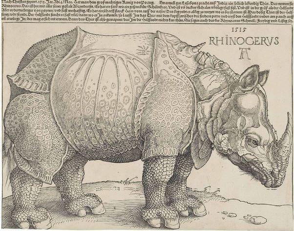 Albrecht Dürer, Rhinoceros, 1515. Foto: Wikipedia