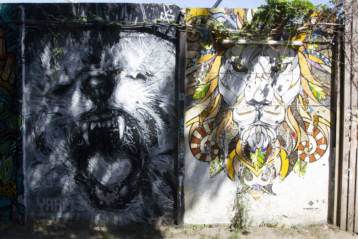 Andreas Preis, Lion, Berlin, Quelle NeoAvantgarde
