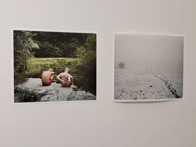 Michał Solarski & Tomasz Liboska, Cut It Short, Ausstellungsansicht KVOST, 2019. Foto © Urszula Usakowska-Wolff