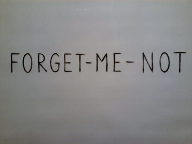 """Kris Martin, """"Forget Me Not"""", Asche von Vergissmeinnicht auf Papier. Foto © Urszula Usakowska-Wolff"""