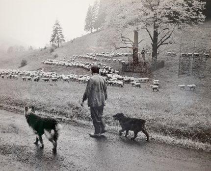 Wohin die Reise auch geht: Harald Hauswald ist ein Fotograf, der sein Handwerk versteht