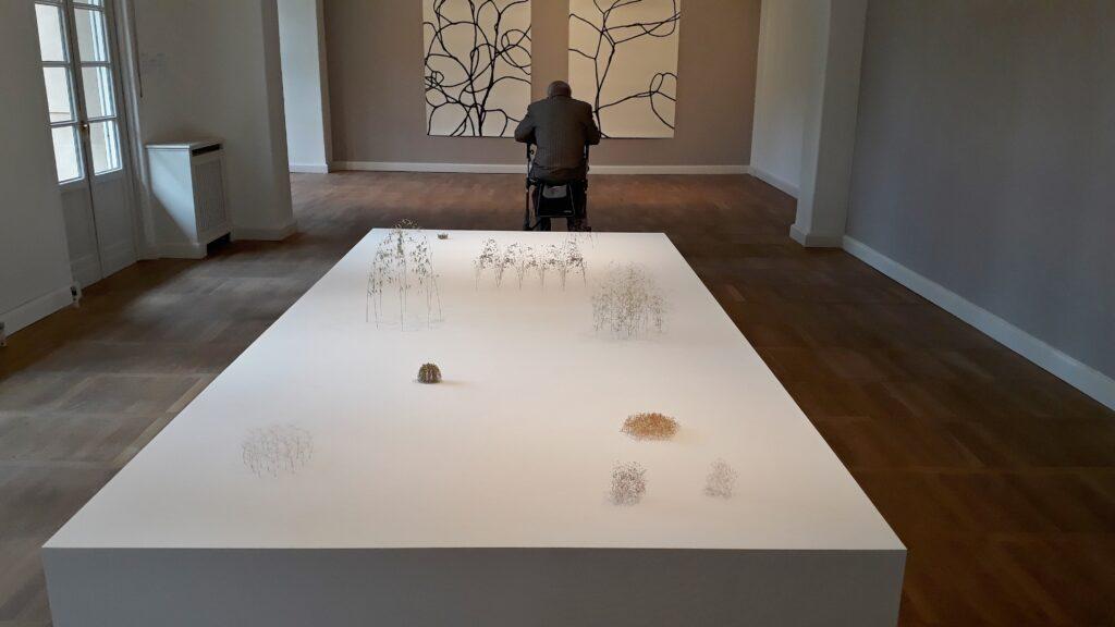 """Christiane Löhr, Installationsansicht der Ausstellung """"Ordnung der Wildnis"""", Haus am Waldsee Berlin, 2021. Foto © Urszula Usakowska-Wolff"""